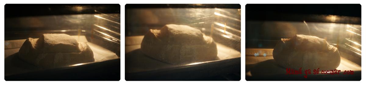 pan9 Hogaza de pan con masa madre